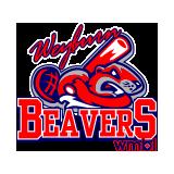 Weyburn Beavers